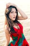 Portret van een mooie Aziaat in een papaver-kleding Stock Foto's