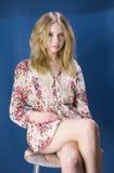 Portret van een mooie blonde Stock Afbeelding