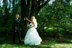 Portret van een mooie bruid en een bruidegom Stock Afbeeldingen