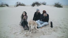 Portret van een mooie familie bij een picknick De mens vangt het ogenblik op de camera stock video
