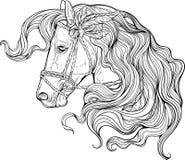 Portret van een paard met lange verfraaide manen vector illustratie