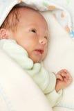 Portret van een pasgeboren baby Royalty-vrije Stock Fotografie