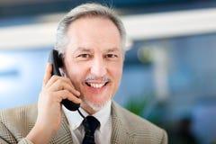 Portret van een rijpe zakenman die bij de telefoon spreken Royalty-vrije Stock Afbeeldingen