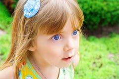 Portret van een schoonheidsmeisje Stock Afbeeldingen