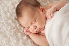 Portret van een Slaap Pasgeboren Baby royalty-vrije stock foto's