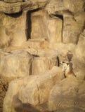 Portret van een suricatta van Meerkat Suricata, een Afrikaans inheems dier die, een kleine carnivoor tot de mongoes behoren royalty-vrije stock afbeeldingen