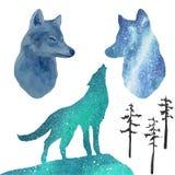 Portret van een wolf en zijn silhouetten tegen de achtergrond van de noordelijke lichten vector illustratie