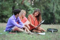 Portret van een zitting van het studententeam op het gras in het Park stock foto