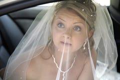 Portret van fiancee onder bruidssluier Stock Afbeelding