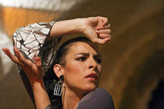 Portret van flamencodanser Stock Foto