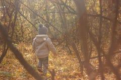 Portret van gelukkig blij kind op de bosfoto als achtergrond Royalty-vrije Stock Afbeeldingen