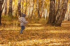 Portret van gelukkig blij kind op de bosfoto als achtergrond Royalty-vrije Stock Fotografie