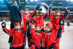 Portret van gelukkig het teamijshockey van jongensspelers stock afbeelding