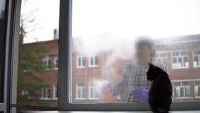 Portret van gelukkig, jong vrouwen schoonmakend venster thuis stock footage