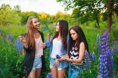 Portret van gelukkige glimlachende vrienden op weekend openlucht Drie mooie jonge gelukkige beste vrienden die pret, het glimlach Stock Foto's