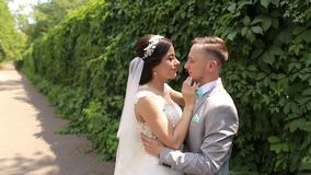Portret van gelukkige jonggehuwden in een Zonnig de zomerpark stock footage