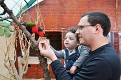 Portret van gelukkige vader en zijn dochter voedende papegaai Stock Foto