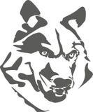 Portret van gevaarlijke wolf Royalty-vrije Stock Afbeeldingen