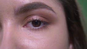 Portret van het close-up het halve gezicht van jong vrij Kaukasisch wijfje die met bruine ogen en donkerbruin haar camera bekijke stock videobeelden