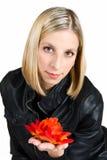 Portret van het jonge mooie meisje   Stock Fotografie