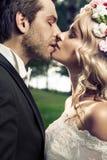 Portret van het kussende huwelijkspaar Royalty-vrije Stock Afbeeldingen