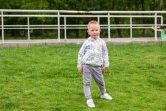 Portret van het leuke jongen snding op groen gebied royalty-vrije stock foto's