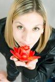 Portret van het meisje met roze in hand Royalty-vrije Stock Afbeelding