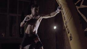 Portret van jong bokserponsen de in dozen doende zak stock footage