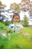 Portret van jonge jongen in aard Royalty-vrije Stock Foto