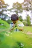 Portret van jonge jongen in aard Stock Foto