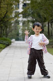 Portret van jongen Stock Foto's