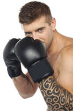 Portret van Kaukasische mannelijke bokser klaar te slaan Royalty-vrije Stock Foto's