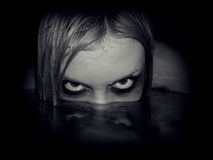 Portret van kwade meermin Stock Afbeelding