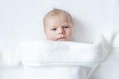 Portret van leuk aanbiddelijk pasgeboren babykind Stock Foto