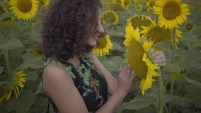 Portret van leuk krullend meisje die grote zonnebloem op het zonnebloemgebied snuiven Verbinding met aard Het landelijke Leven na stock videobeelden