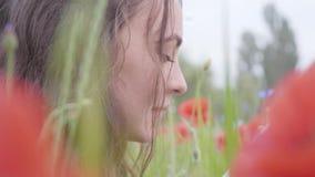 Portret van leuke aanbiddelijke vrouwenzitting in de lezingsboek van het papavergebied in openlucht Contrastkleuren in papaver bl stock video