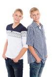 Portret van leuke tweelingbroers Royalty-vrije Stock Foto's