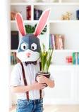Portret van modieus veelhoekig Pasen-konijn met de verse lente ingemaakte bloemen, veelhoekig masker stock foto
