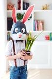 Portret van modieus veelhoekig Pasen-konijn met de verse lente ingemaakte bloemen, veelhoekig masker royalty-vrije stock afbeelding