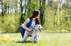 Portret van Mooi jong meisje met haar honden stock afbeelding