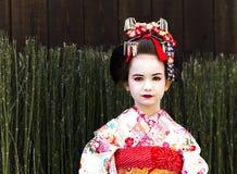 Portret van mooi meisje in Maiko-kimonokleding Royalty-vrije Stock Afbeeldingen