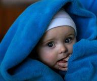 Portret van mooie blauw-eyed die baby binnen aan de blauwe deken wordt verpakt Stock Afbeelding