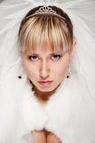 Portret van mooie bruid Stock Foto