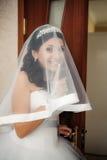 Portret van mooie bruid met sluier stock afbeeldingen