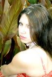 Portret van mooie jonge dame Stock Afbeeldingen