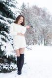 Portret van Mooie Jonge Vrouw met Zilveren Kerstmisballen Portret van een de wintervrouw Stock Afbeelding