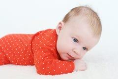 Portret van mooie 2 van het babymaanden meisje die op buik liggen Stock Afbeeldingen