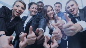 Portret van opgewekte jonge bedrijfsmensen die op u richten Royalty-vrije Stock Afbeelding