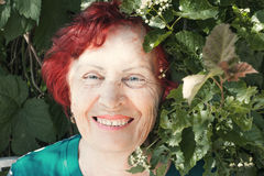 Portret van oude vrouwen Royalty-vrije Stock Foto