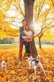 Portret van paar in openlucht in de herfstpark met honden Stock Afbeeldingen